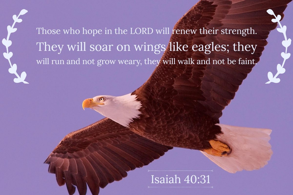 Soar like Eagles
