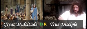 A Great Multitude or true Disciple
